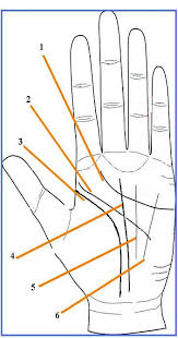Palm Reading Hand Chart The Quick And Easy Guide To Palmistry