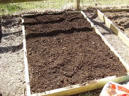 i put lime down and the end of the season lime is alkaline peat moss is acidic you typically want you garden soil neutral but that is another blog entry
