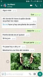 Agustina Castillo (@agustinabc112) | Twitter