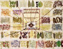 Navajo Dye Chart Navajo Natural Dyes How To Dye Fabric Navajo Textile