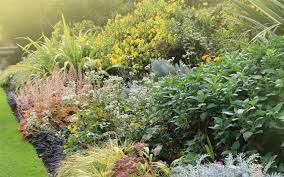 Small Picture How to plant a herbaceous perennial border David Domoney