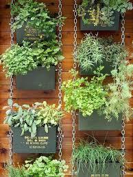 decorative vegetable garden ideas vertical gardens gardens and old pallets on decorative vegetable garden ideas stylish