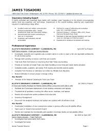 Claims Adjuster Resume Com Best Resume Templates Claims Adjuster