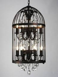 Birdcage lights