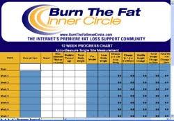 Download Burn The Fat Inner Circle 12 Week Progress Chart