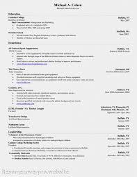 Beautiful Resume Label Ideas Simple Resume Office Templates