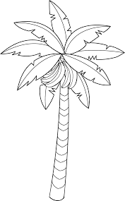 Small Picture Banana Tree Leaf Outline Clipart ClipartFox Coloring Page Banana