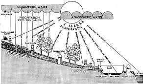 the water survey of