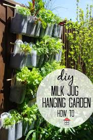 what a perfect way to make use of unused space to grow health delicious and