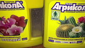 <b>Удобрение для орхидей</b>. Когда удобрять фаленопсис. - YouTube