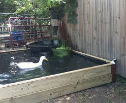 62 aboveground beauty how to build a no dig backyard pond for under 70 hawk hill