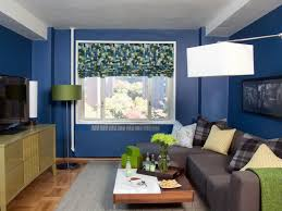 family living room ideas small. Full Size Of Living Room:small Room Design Ideas Orginal Blue Small Apartment Family C