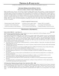 supply chain resume example supply manager examples management gallery of resume format for supply chain management