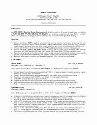 Techno Functional Consultant Cover Letter Sap Mm Functional