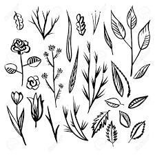 Floral Sketch Designs Floral Designs Detail Sketch