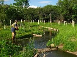 North Branch Wiscoy Creek Habitat Enhancement Evaluation