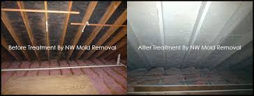 attic mold remediation cost. Brilliant Remediation BeforeAfter Attic Mold Removal Inside Remediation Cost O