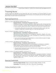 Instructional Design Resume Instructional Designer Resume Template Design Plan Example Examples