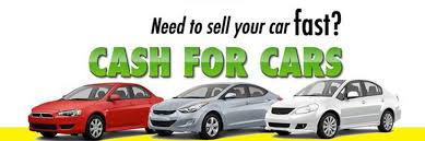 plpd car insurance quotes