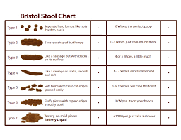 Bristols Stool Chart Stool Stackable Chairs Home Hacks