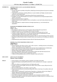 Business Consultant Sample Resume Business Senior Consultant Resume Samples Velvet Jobs 10