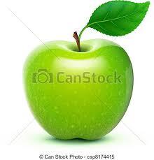 green apple fruit drawing. vector - green apple fruit drawing d