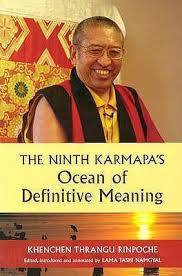 definitive meaning. ninth karmapa\u0027s ocean of definitive meaning i