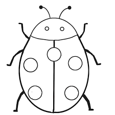 Lady Bug Coloring Sheet Lady Bug Coloring Page Tinyq Me