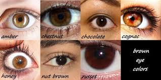Kami Garcia Kamigarcia This Brown Eye Color Chart Is A
