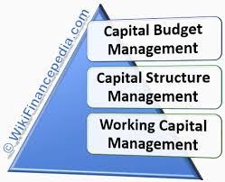 Types Of Financial Management Wikifinancepedia