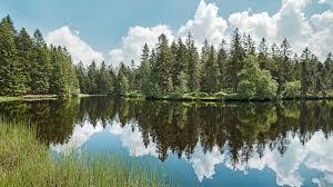 Doubs Nature Park Switzerland Tourism