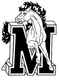 Job Description: Vice President - Mercer International Middle School