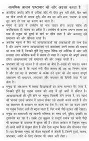 essay on too much greed lead to corruption in hindi 7