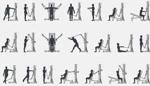triceps and biceps workout without weights is a great way to continue your education if you can not go to the gym or just to have a biceps and triceps