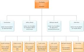 Diagram Of Organizational Chart Diagram Software The Best Choice For Diagramming Connect