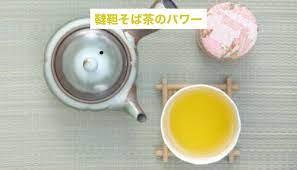 韃靼 そば 茶 効能