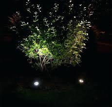 In ground lighting Sidewalk Well Light Led In Ground Well Light Tree In Landscape Application Freqmediaco Well Light Image Gallery Of Landscape Well Lights Sweet Looking Led
