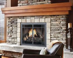 image of best gas fireplace doors