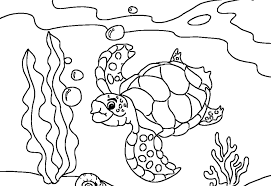 Small Picture Turtle Coloring Pages For Kids Archives Printable Coloring page