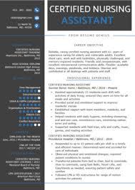 Modern Nurse Resume Format Word Nursing Resume Sample Writing Guide Resume Genius