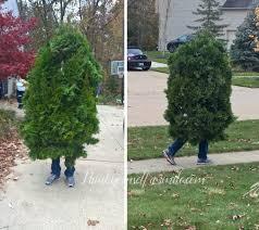 bush costume diy costume