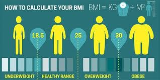 Ideal Weight Chart In Kg And Cm Bmi Calculator For Women And Men Kg Cm Ww Nz