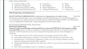 Resume Professional Summary Adorable Management Resume Summary From Professional Summary Resume Examples