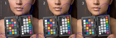 Colorchecker How To Get Perfect Skin Colors With Every Camera