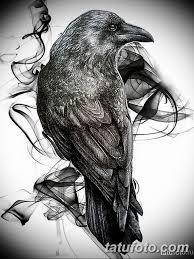 тату эскизы мужские ворон 09032019 002 Tattoo Sketches