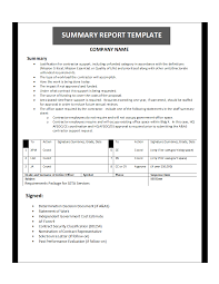 Sample Summary Report Template SummaryReportTemplate24x24png 1