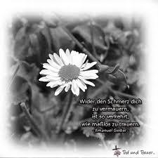 Beileid Sprüche Mitfühlende Und Tröstende Worte Für Trauerkarten