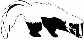 Small Picture Black and White Skunk Coloring Page Color Luna