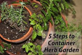 Kitchen Gardening Tips Spectacular Inspiration Starting An Herb Garden Lovely Decoration