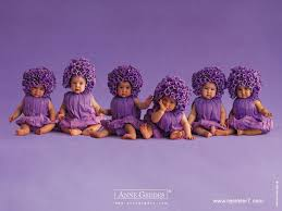 Sweety Babies Images Purple Flower Babies For Sylvie Hd Wallpaper